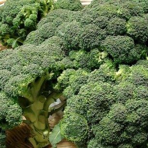 Chou brocoli Calabrais
