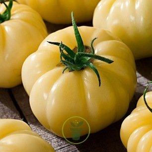 Tomate White Beefsteak 60 graines