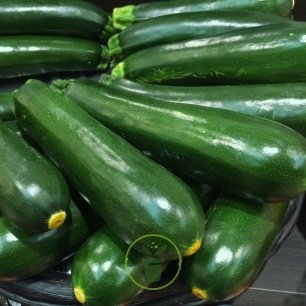 Courgette Black Beauty BIO 2 grammes