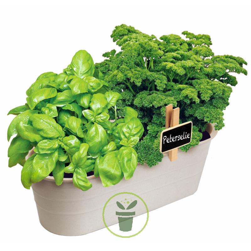 Jardin Aromatique Bio Kit Complet Pret Et Facile A Pousser