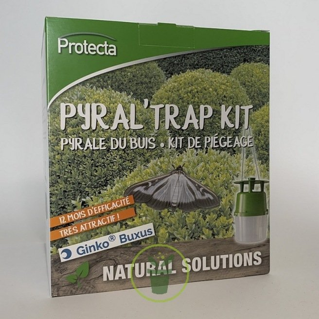 Pyrale de buis - Kit complet de lutte - piège à phéromone