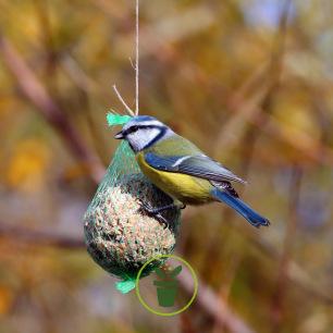 Boule de graisse pour oiseaux (10 x 95 gr)