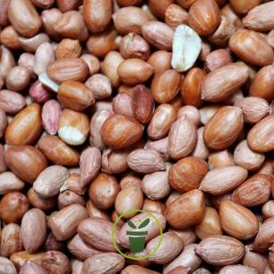 Arachides décortiquées – 750 grammes