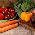 Légumes biologiques