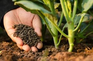 Vente en ligne d'engrais organiques biologiques