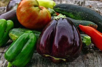 Achat de graines pour semer et récolter des légumes en août