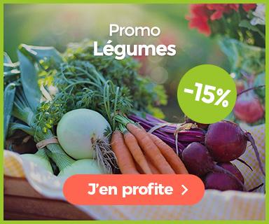 Promotion sur graines de légumes
